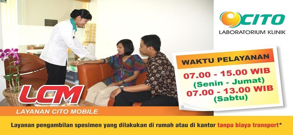 Lowongan Kerja PT. CITO PUTRA UTAMA | TopKarir.com