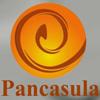 lowongan kerja PT. PANCASULA INDONESIA | Topkarir.com
