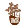 lowongan kerja PT. TIGATE TREES INDONESIA | Topkarir.com