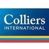 lowongan kerja PT. COLLIERS INTERNATIONAL INDONESIA | Topkarir.com