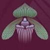 lowongan kerja  ORCHID FOREST CIKOLE   Topkarir.com